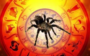 2020-god-pryadushchego-mizgirya-goroskop-po-slavyanskomu-kalendaryu-3